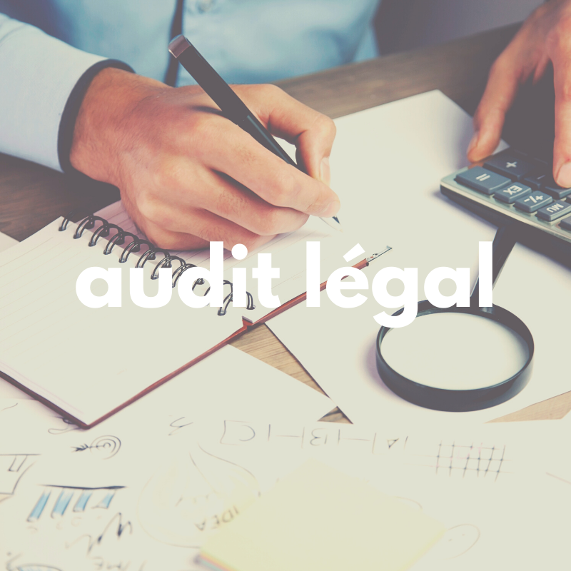 audit legal