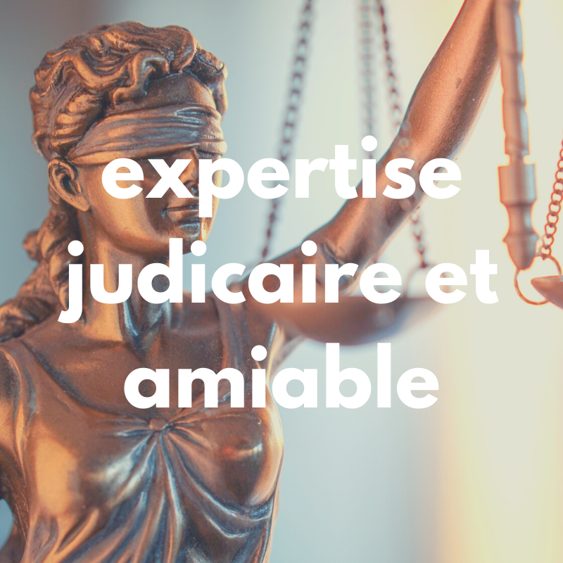 expertice judiciaire et amiable